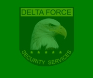 Delta Force Security Services & Consultancy